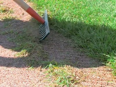 Photo: Raking the edge between soil and grass